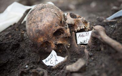 Museum beskriver nakkeskade fra 1600-tallet – norske leger mener skaden ikke eksisterer