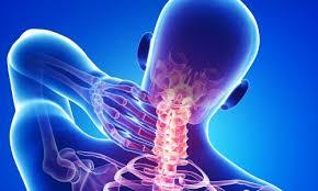 Behandler skadde leddbånd med stamceller